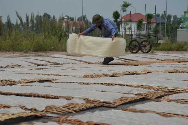 Craft villages develop despite urbanisation ​in Hai Duong hinh anh 1