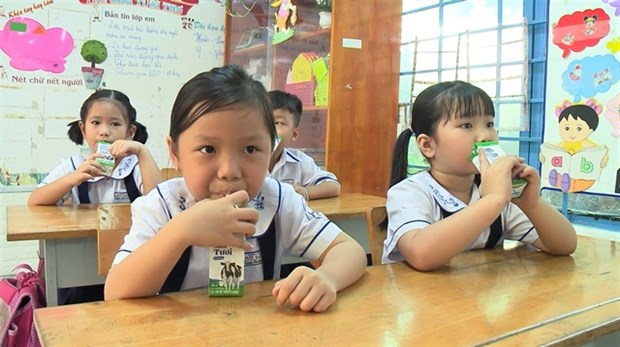 HCM City launches school milk programme hinh anh 1