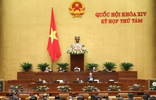 Legislators discuss socio-economic development for ethnic minorities hinh anh 1