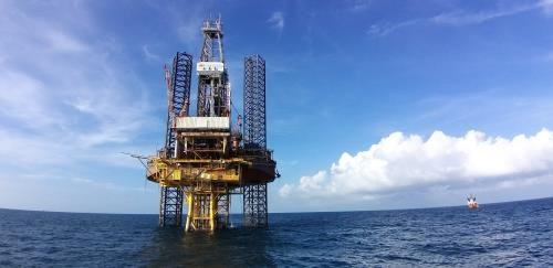 Vietsovpetro welcomes first oil flow from Bach Ho field's BK-20 rig hinh anh 1