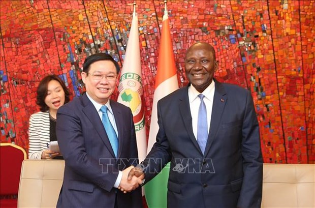 Vietnam, Ivory Coast hold huge cooperation potential: Deputy PM hinh anh 1