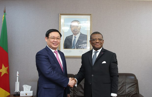 Vietnam wants to boost multi-faceted partnership with Cameroon hinh anh 1