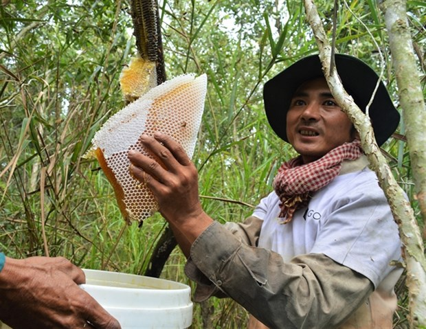 Ca Mau promotes key agricultural products hinh anh 1
