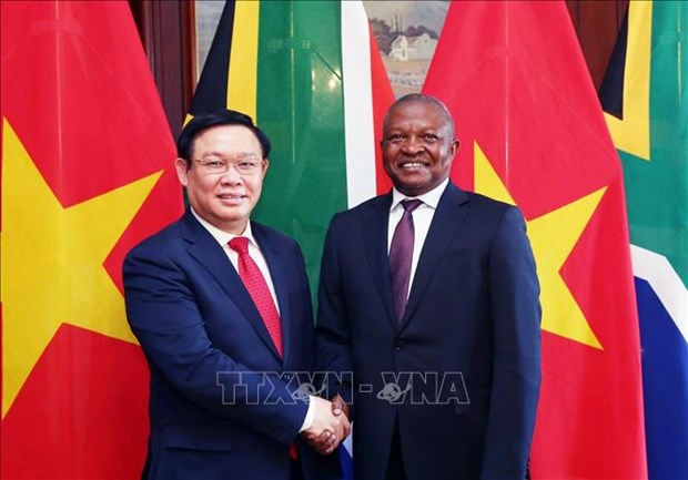 Deputy PM Vuong Dinh Hue pays working visit to South Africa hinh anh 1