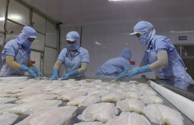 US recognises Vietnam's pangasius quality control system hinh anh 1