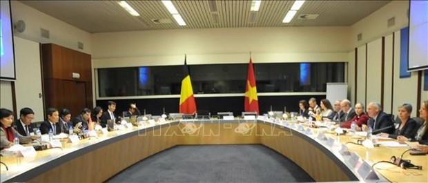 Vietnam, Belgium boost economic collaboration hinh anh 1