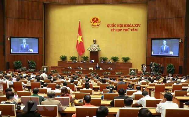 Trade minister fields questions about trade fraud hinh anh 1