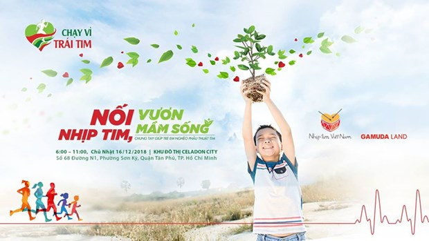 10,000 runners to race for children with heart diseases hinh anh 1