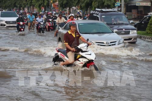 Flood prevention projects need to be reworked: experts hinh anh 1