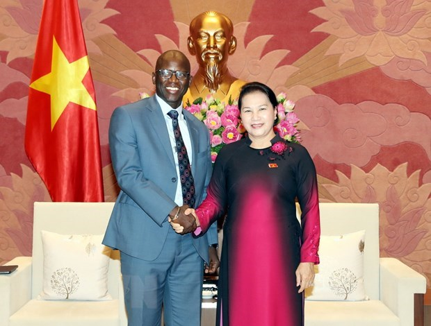 NA Chairwoman receives WB's country director hinh anh 1