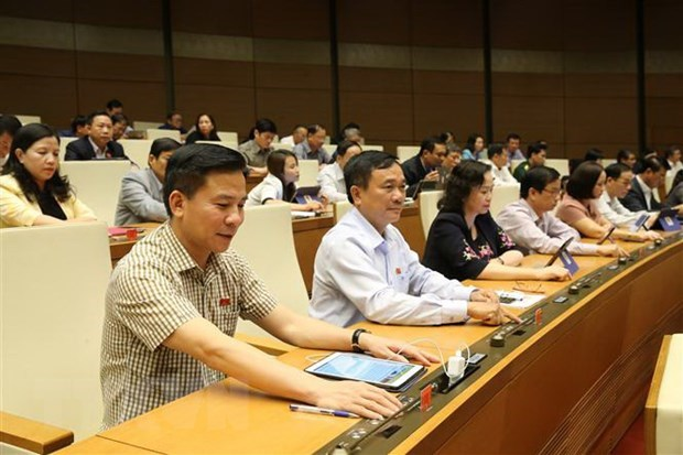 National Assembly adopts resolution on State budget estimate in 2020 hinh anh 1