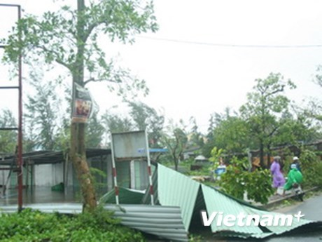 Two die, one go missing due to storm Nakri hinh anh 1