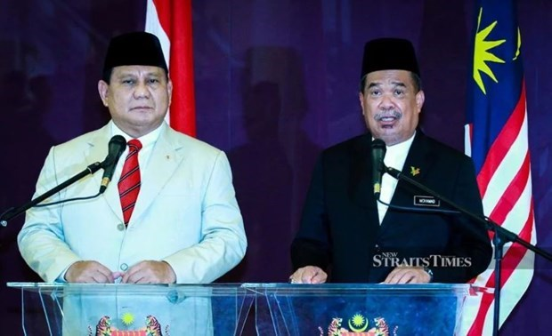 Malaysia, Indonesia step up defence cooperation hinh anh 1