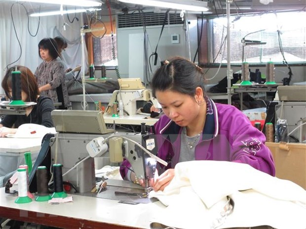 Japan's Ibaraki prefecture to open door for more Vietnamese workers hinh anh 1