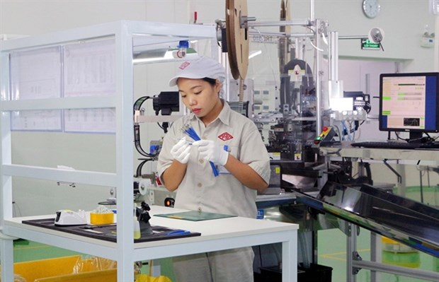 Law on Enterprises needs greater reforms: experts hinh anh 1