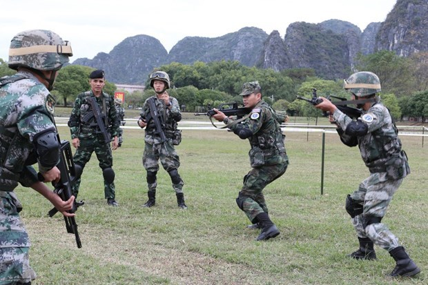 ADMM Plus countries conclude joint anti-terrorism actual-troop drill hinh anh 1
