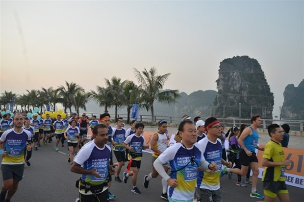 Halong Bay marathon to be held this weekend hinh anh 1