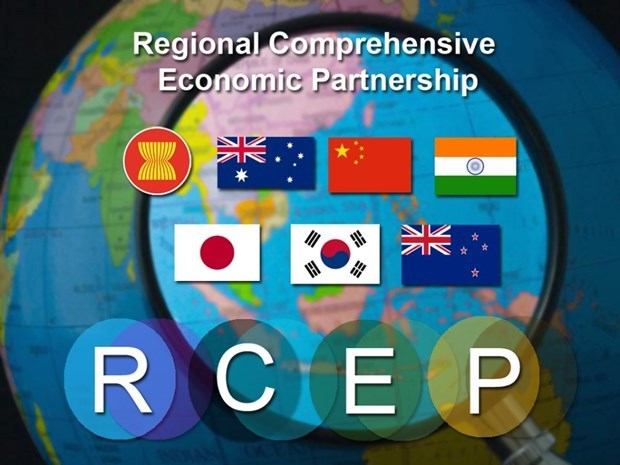Indonesia vows to open 65 percent of market after RCEP hinh anh 1