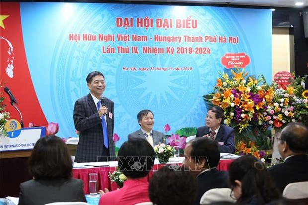 Association works hard to forge Vietnam-Hungary ties hinh anh 1