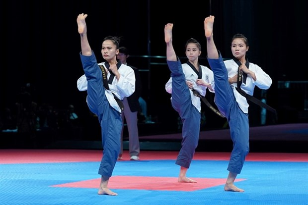 Taekwondo performers target golds at SEA Games hinh anh 1