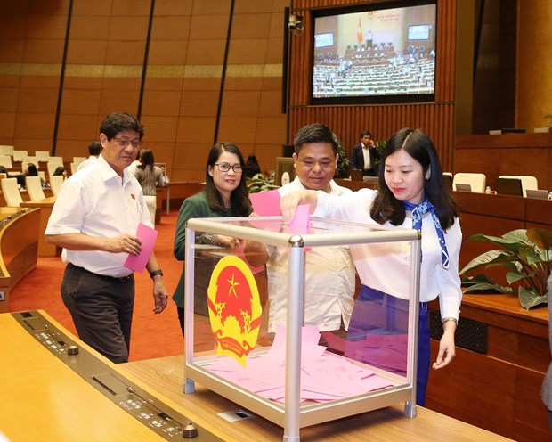 Legislators make decisions on three draft laws, personnel work hinh anh 1