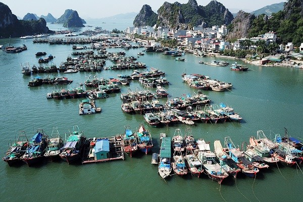 Van Don economic zone management board established hinh anh 1