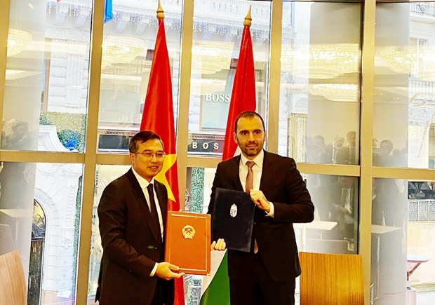 Vietnam, Hungary step up all-round cooperation hinh anh 1