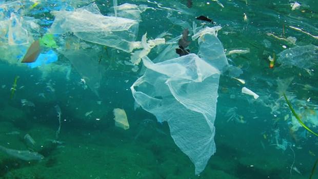 Thailand works to reduce marine garbage volume hinh anh 1