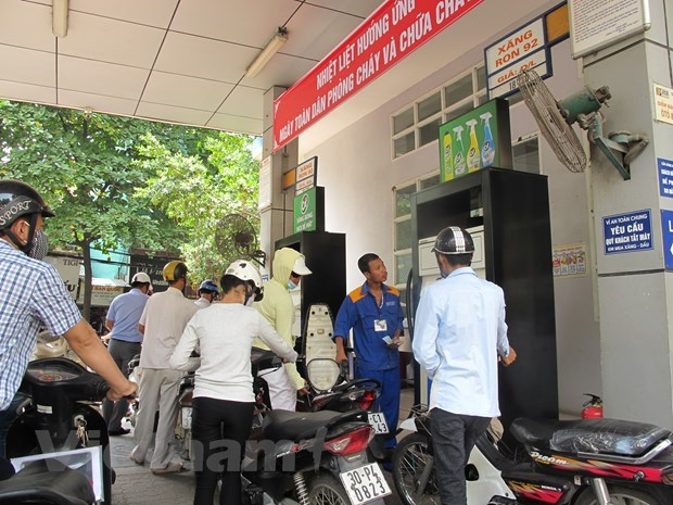 Petrol price adjusted up in latest review hinh anh 1