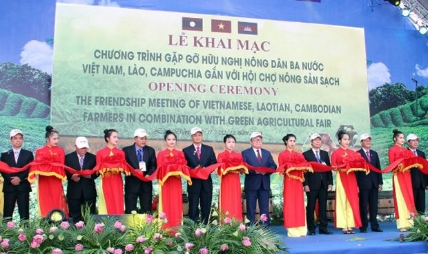 Vietnamese, Lao, Cambodian farmers cultivate ties in clean agriculture hinh anh 1