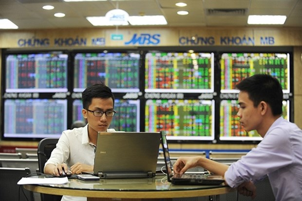 Local brokerages rush to raise capital hinh anh 1
