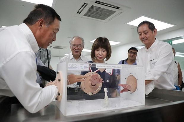 Singapore boosts dengue fight with new mozzie breeding facility hinh anh 1