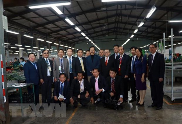 Exchange between Vietnamese, Lao, Cambodian farmers ends hinh anh 1