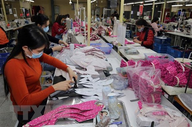 Vietnam enjoys trade surplus with Israel in first 10 months hinh anh 1