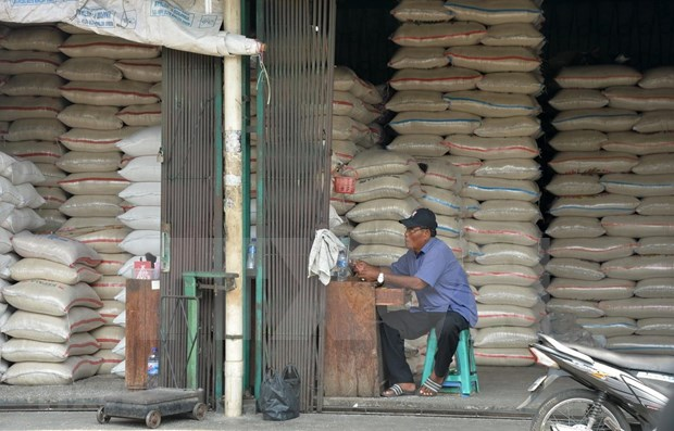 Indonesia aims to export up to half a mln tonnes of premium rice in 2020 hinh anh 1