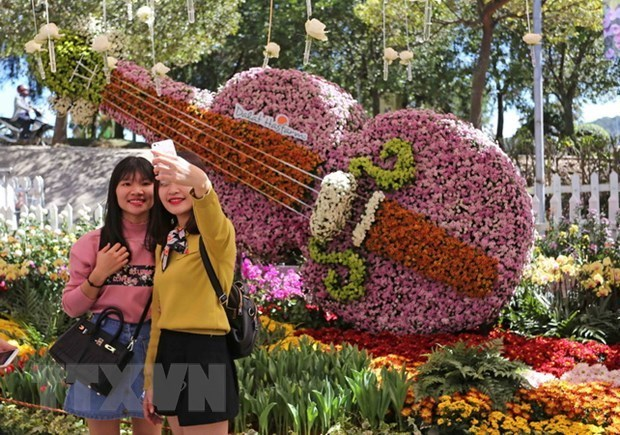 Da Lat flower festival promises attractive activities hinh anh 1