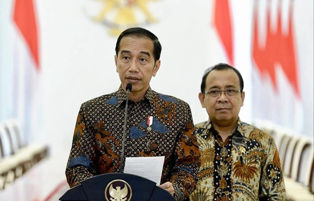 Indonesia rolls out strategies to ease economic pressure hinh anh 1