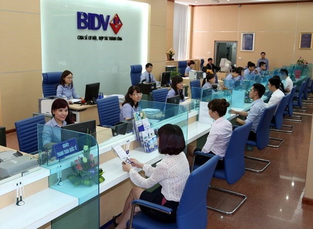 Profit targets within reach for domestic banks as 2019 draws to a close hinh anh 1