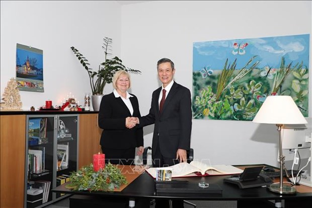 Vietnam, German Sachsen-Anhalt State boast high cooperation potential: ambassador hinh anh 1