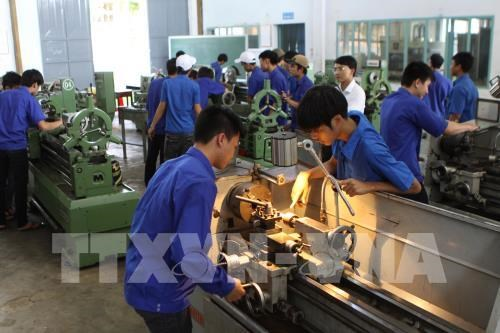 Germany looks to draw human resources from Vietnam hinh anh 1