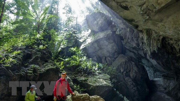 Private company granted exclusive rights to Son Doong tours hinh anh 1