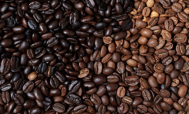 Coffee sector targets 6 billion USD in export turnover in 2020 hinh anh 1