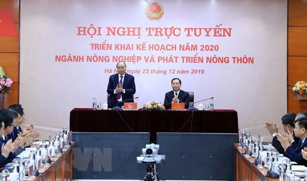 Agriculture sector must grow by 3 pct next year: PM hinh anh 1