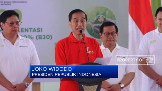 Indonesian President kicks off use of B30 biodiesel hinh anh 1