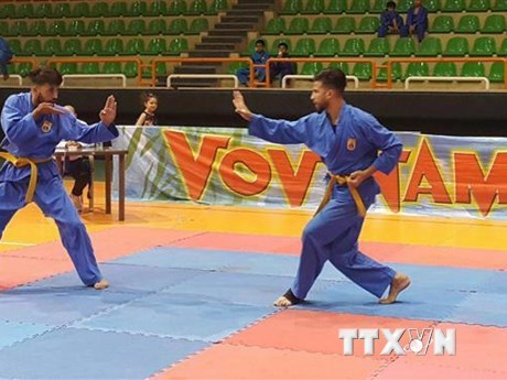 Vietnam secures berth at Vovinam world championships hinh anh 1