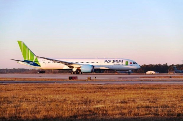 Bamboo Airways offers shares to foreign investors hinh anh 1