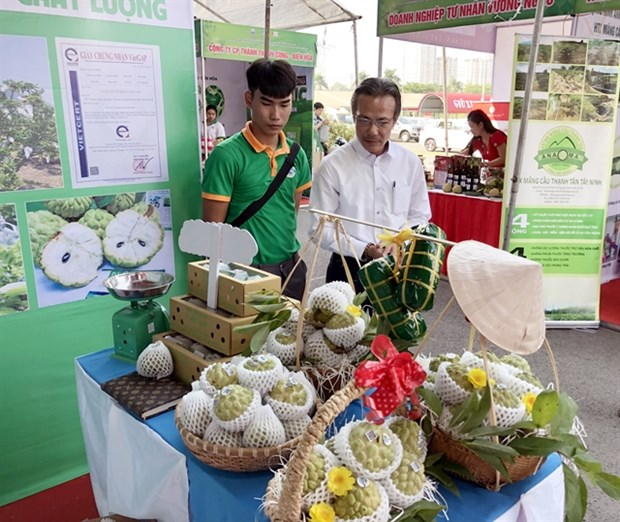 Tay Ninh promotes safe agricultural products, foodstuff in HCM City hinh anh 1