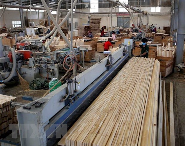 Forestry sector aims for 10 pct growth in export in 2020 hinh anh 1