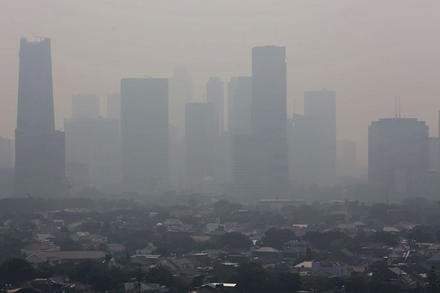 Indonesia ranks fourth in pollution-related deaths hinh anh 1