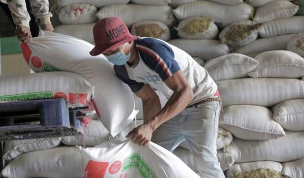 Cambodia exports 7 million tonnes of farm produce in 2019 hinh anh 1